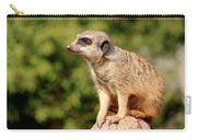 Meerkat 1 Carry-all Pouch