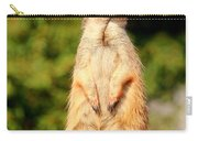 Meerkat 2 Carry-all Pouch
