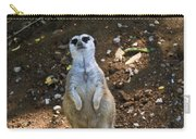 Meerkat Poising Carry-all Pouch