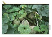 Mellon 2 Carry-all Pouch