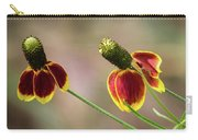 Mexican Hat Carry-all Pouch