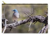 Mexican Jay Carry-all Pouch