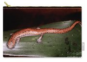 Mexican Palm Salamander Carry-all Pouch