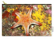 Mexico, Gulf Sea Star Carry-all Pouch