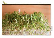 Micro Green Carry-all Pouch