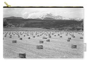 Mid June Colorado Hay  And The Twin Peaks Longs And Meeker Bw Carry-all Pouch