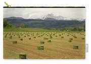 Mid June Colorado Hay  And The Twin Peaks Longs And Meeker Carry-all Pouch