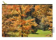 Middle Falls Viewpoint In Letchworth State Park Carry-all Pouch