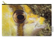 Milletseed Butterflyfish Carry-all Pouch