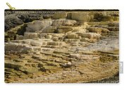 Minerva Terrace 2 Carry-all Pouch