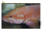 Miniatus Grouper - Cephalopholis Miniata Carry-all Pouch