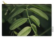 Golden Ratio In Nature Carry-all Pouch