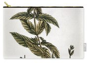 Mint Plant, 1735 Carry-all Pouch