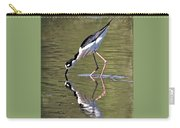 Mirror Image Stilt II Carry-all Pouch