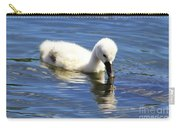 Mirrored Cygnet Carry-all Pouch