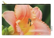 Miss Tinkerbell Daylily Carry-all Pouch