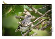 Mockingbird Youngster Carry-all Pouch
