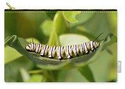 Monarch Caterpillar Carry-all Pouch
