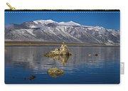 Mono Lake Pano Carry-all Pouch