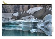 Montana Icebergs Carry-all Pouch