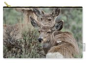 Montana Mule Deer On A Spring Night Carry-all Pouch