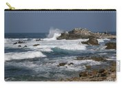 Monterey Coastline Carry-all Pouch