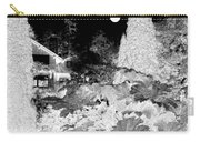 Moon Over Stanley Park Carry-all Pouch by Will Borden