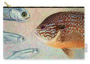 Mooneyes, Sunfish Carry-all Pouch