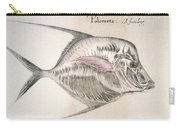 Moonfish, 1585 Carry-all Pouch