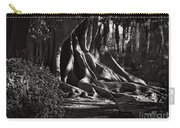 Moonlight In The Park - Valencia Carry-all Pouch
