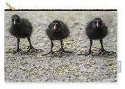 Moorhen Chicks Carry-all Pouch