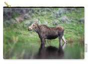 Moose Yellowstone Np_grk6918_05222018 Carry-all Pouch