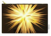 Moravian Star Carry-all Pouch