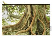Moreton Bay Fig 2 Carry-all Pouch