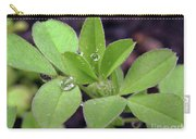 Dewdrops On Leaves Carry-all Pouch