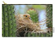 Mourning Dove Nest In A Cactus Carry-all Pouch