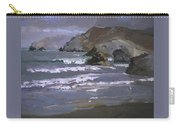 Morning Fog Shark Harbor - Catalina Island Carry-all Pouch