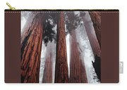 Morning Fog In Redwood Forest Carry-all Pouch