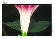 Morning Glory Stand Up Carry-all Pouch