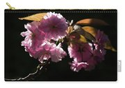 Morning Light Carry-all Pouch by Helga Novelli