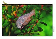 Morning Rains Carry-all Pouch