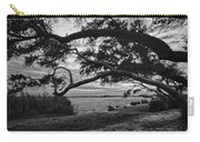 Morning Sunrise In Bw Carry-all Pouch