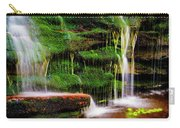 Moss Falls - 2981-2 Carry-all Pouch