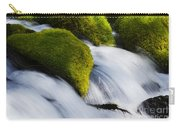 Mossy Rocks Oregon 2 Carry-all Pouch