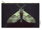 Moth At Texaco Station Carry-all Pouch