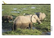 Mother And Calves Carry-all Pouch