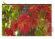 Mother Nature's Style Carry-all Pouch