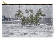 Mount Desert Narrows Snowscape Carry-all Pouch