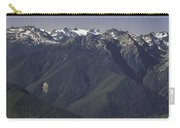 Mount Olympus Washington Carry-all Pouch