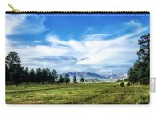 Mount Pagosa Meadow Carry-all Pouch